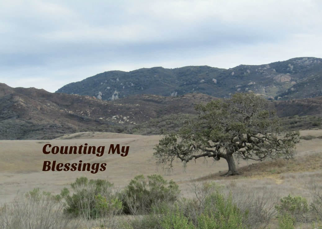 Counting My Blessings Today